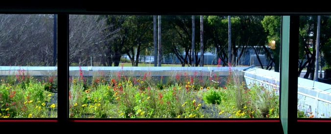 green roof_2010