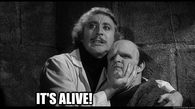 young-frankenstein-meme