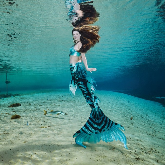 MERMAID-TAYLOR_MG_5504_FINAL-WEB-700x700