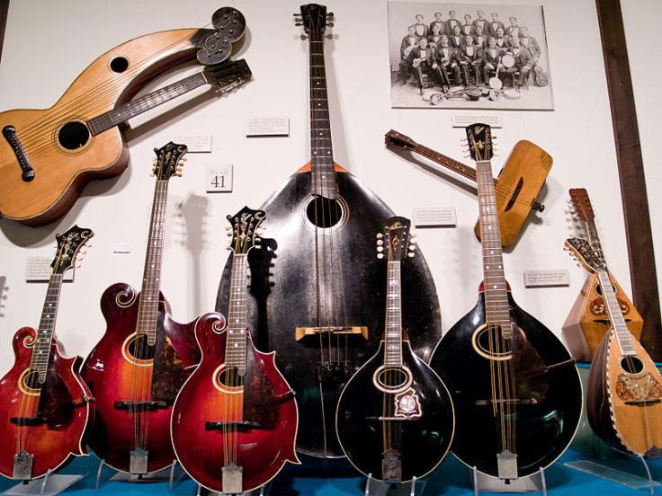 gibson mandolin family